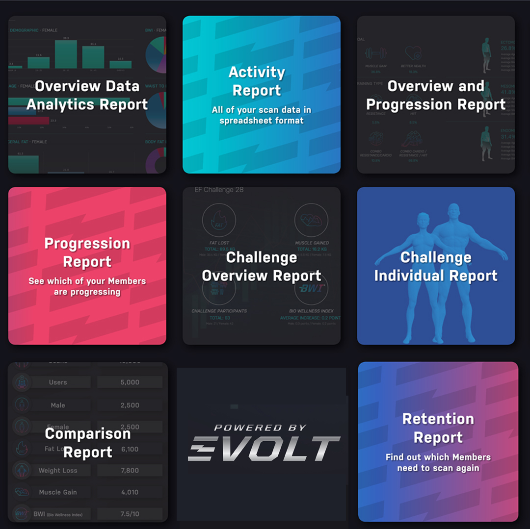 Evolt Insights Dashboard